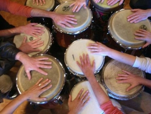 photo of hands on bongo drums
